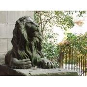 Львов — Брно фото