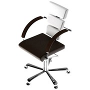 Парикмахерское кресло Panda Perfect фото