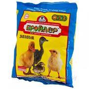 Премикс-концентрат Бройлер (Эконом) для цыплят-бройлеров 500г фото