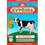 Премикс Буренка для молочных коров (300 г.) фото