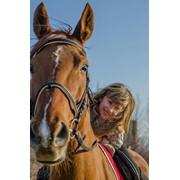 Прогулянки на конях на Львівському іподромі фото