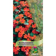 Семена комнатного растения Бальзамин Оранжевая милашка (комн.) фото