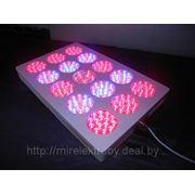 Светодиодная лампа для парников и теплиц 505W (аналог 2000W ДНатр), led grow lamp 135W фото