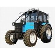 Лесохозяйственный Трактор БЕЛАРУС Л82.2-02 фото