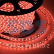 LED лента Neon-Night, герметичная в силиконовой оболочке, 220V, 13*8 мм, IP65, SMD 5050, 60 диодов/метр, цвет светодиодов красный, бухта 50 метров фото