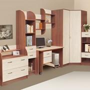 Корпусная мебель Карина набор фото