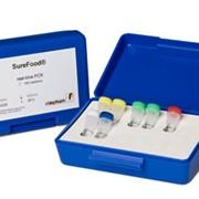 Анализ ГМО/ПЦР/ПЛР/PCR/лаборатория/BSE фото