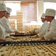Трудоустройство в Чехии Упаковщицы на кондитерскую фабрику фото