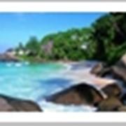 Острова Антигуа и Барбуда фото