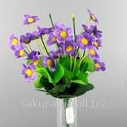 Букет / Агростемма / 0,3 м / 28 цветков, 42 листа / Фиолетовый e33186 фото