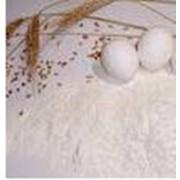 Мука из пшеницы твердых сортов фото