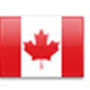 Основной курс английского языка Канада: Торонто и Ванкувер фото