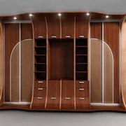 Мебель по индивидуальному заказу фото