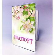Обкладинка на паспорт яблуневий цвіт фото