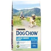 Сухой корм для щенков DOG CHOW PUPPY LARGE BREED Turkey 14 кг фото