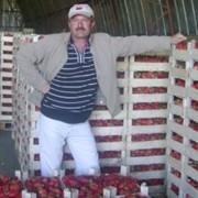 """Свежие ягоды земляники садовой """"клубники"""" фото"""