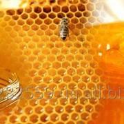 Мёд натуральный Разнотравье фото
