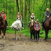 Индивидуальная конная прогулка фото