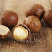 Макадамия в скорлупе 1 кг.*10 шт. фото