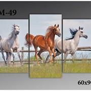 Картина модульная М-49, размер 60х90 фото