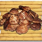 Грибы шиитаки (сушеные) фото
