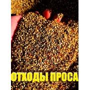 Отходы зерна, проса. Зерноотходы.  фото