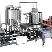 Установка по переработке 1000 л/день пастеризованного молока в прессованный сыр фото