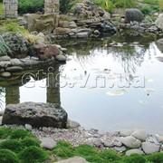 Пруды садовые, материалы для водоемов, прудов фото
