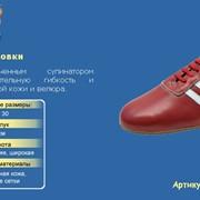 Танцевальная обувь ДЖАЗОВКИ категория `для спортивних танцев`, с укороченным супинатором обеспечивают дополнительную гибкость и изготавливаются из мягкой кожи и велюра, Арт.912-04 фото
