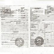 Сертификация зерна фото