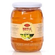 Натуральный мед «Донник» в молдове фото