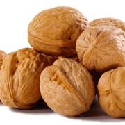 Калибровка грецкого ореха фото