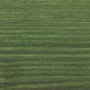 Однослойная лазурь Einmal-Lasur HS Plus 9211, 9212, 9221, 9222, 9232, 9233, 9234, 9235, 9236, 9241, 9242, 9252, 9261, 9262, 9264, 9271 2,5 л фото