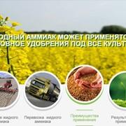 Для повышения урожайности , борьбы с вредителями и сорняками фото