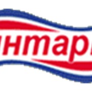 Сыр плавленый Янтарь фото