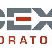 Тест на стельность IDEXX фото