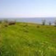 Земли, используемые для организации туризма. Земельные участки для строительства коттеджного поселка на берегу Чёрного моря. фото