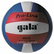 Мяч волейбольный Gala Pro-Line BV 4051SAE фото