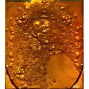 Голограмма художественная Блюдо с монетами фото