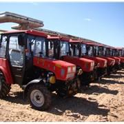 Трактор МТЗ 320.4 Беларус фото