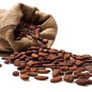 Какао продукты для кондитерского производства фото