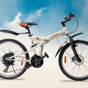 Велосипед Viva BMF 24 фото