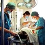 Хирургия ветеринарная фото