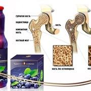 Влияние черничной пасты на остеопороз фото