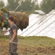 """Средство для силосования, повышения урожайности """"АКВАЭХА-АГРО"""" в канистре 5л фото"""