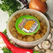 Шампиньоны в пикантном соусе, Украина, купить, цена. Товар от производителя оптом.