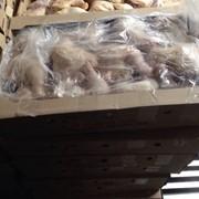 Мясо птицы ( окорочка,крылья,грудка,филе,фарш) фото