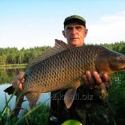 Рыбалка в Караганде фото