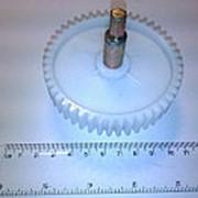 Z167.05 Шестерня ведущая для мясорубки Дива (Д-84мм) фото