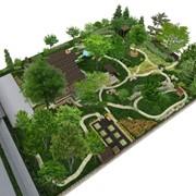 Проектирование ландшафта сада в Минской области фото